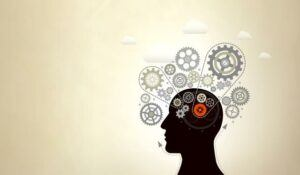 How to Train the Brain for Success