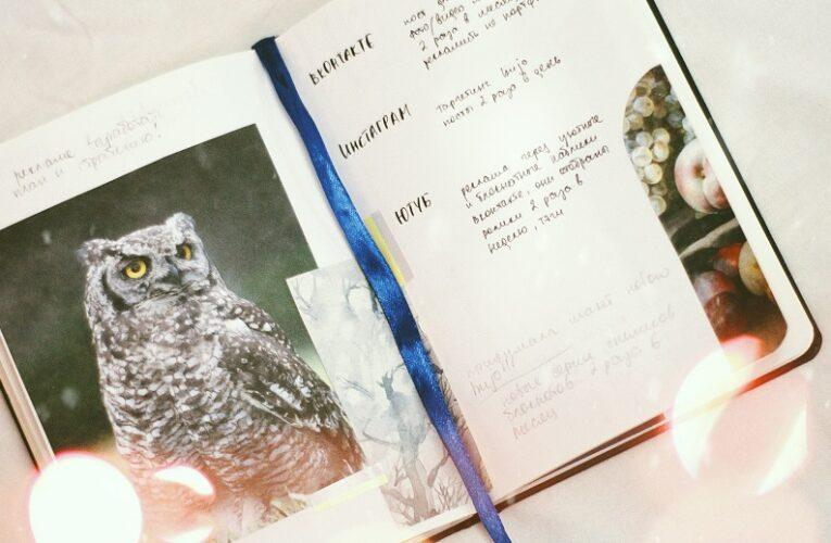 The Wise Old Owl & Freedom to Roam Marketing