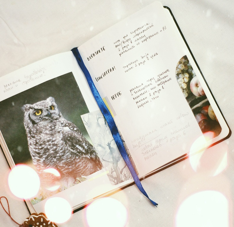 How to Learn the Wise Old Owl Theory